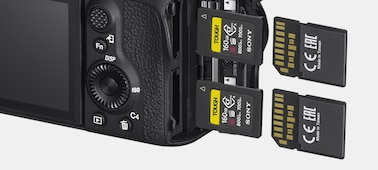 Camera rear view with two SD cards