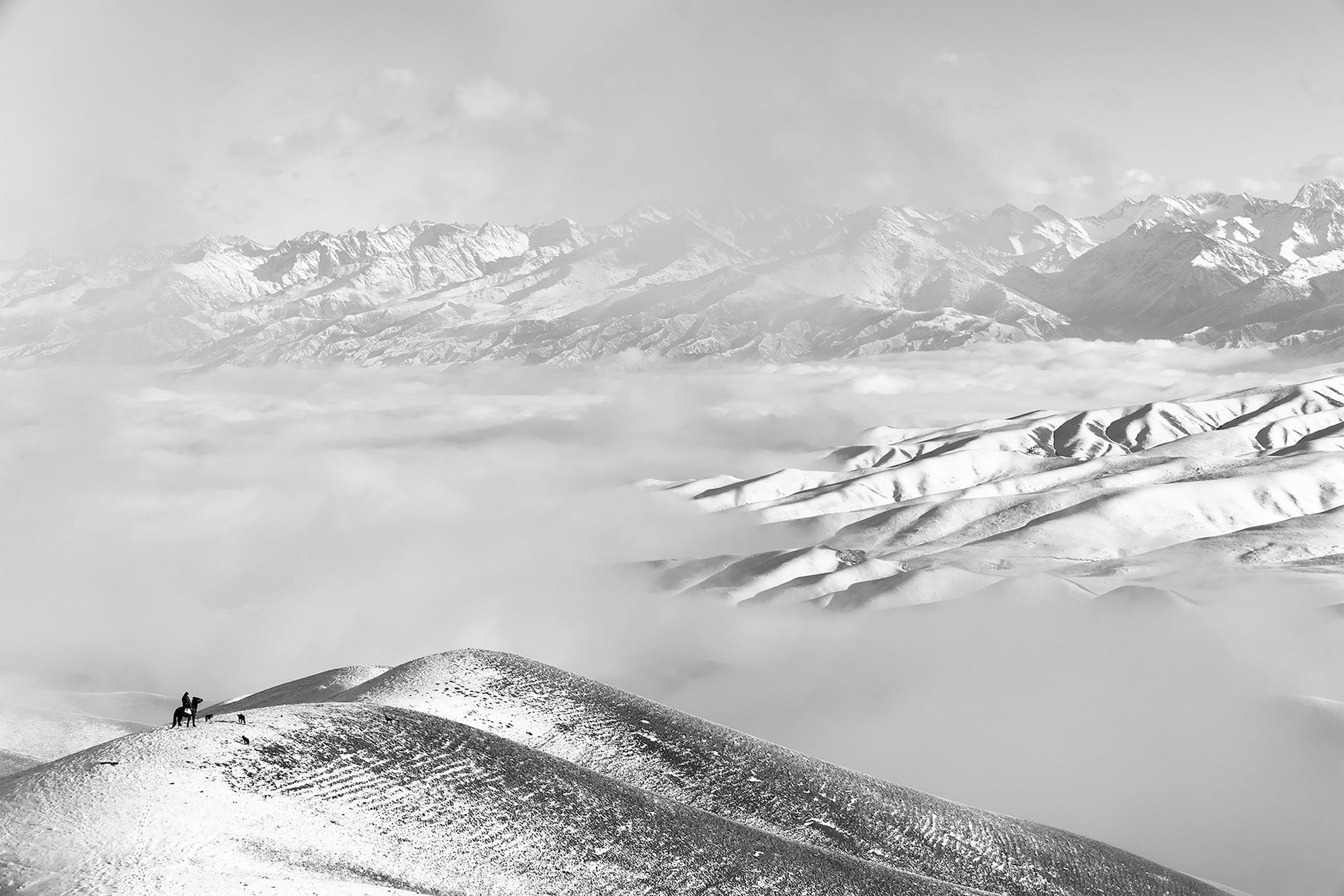 frederik buyckx sony alpha 7RM3 lone horse rider sits atop a mountain looking at distant snow covered landscape